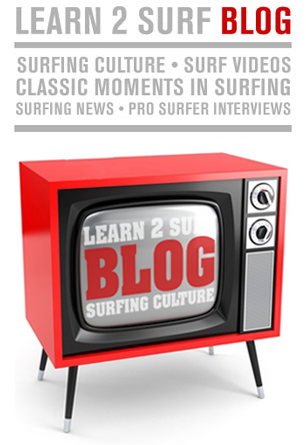 Learn 2 Surf Surfing BLOG